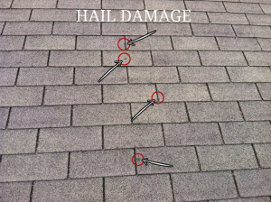 Signs of Hail Damage Roof Repair Needed